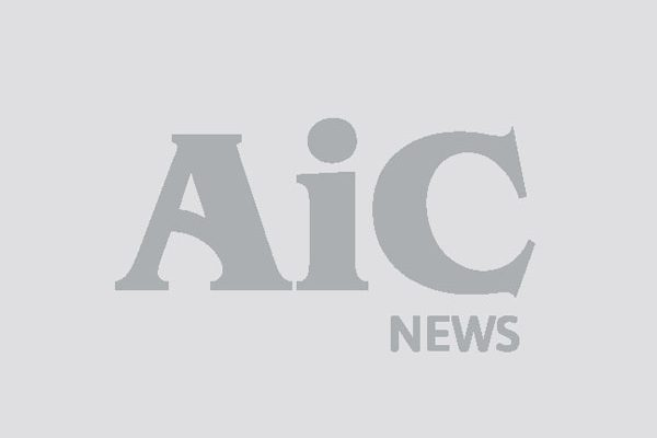 AIC-IMG-GENERICA