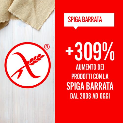 spiga-barrata-600x600